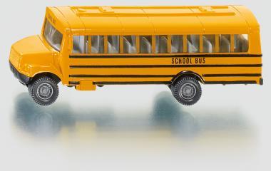 US-Schulbus 1319